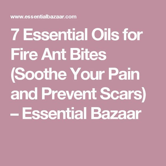 7 Essential Oils for Fire Ant Bites (Soothe Your Pain and Prevent Scars) – Essential Bazaar
