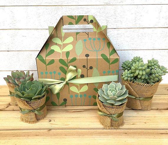 Succulent Gift Box Teacher Gift Garden In A Box Gift For Gardeners