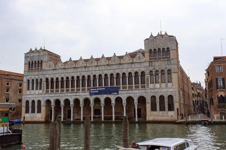 Museo di Storia Naturale in Venezia