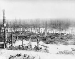 WWI, Nov 1916, Somme; Flooded area in the Ancre Valley. ©IWM