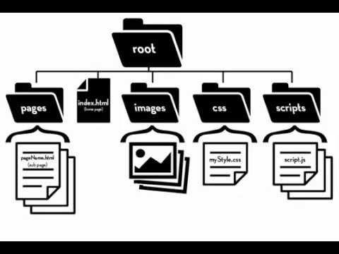7 Web D 01 File And Folder Structure Youtube Web Design Building A Website Folders