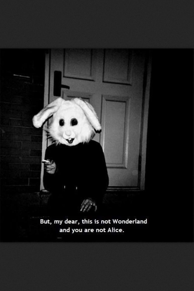 do you know where wonderland is?