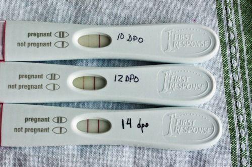 Ovulation Symptoms: 9 Signs of Ovulation   Births   Ovulation test