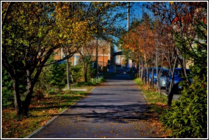 Csíkszereda - Autumn