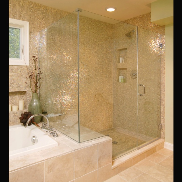 Shower Tub Combo Master Bath Pinterest