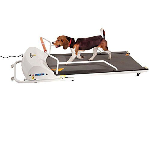 Gopet EPPR720F PetRun PR720F Dog Treadmill >>> Check this awesome product by going to the link at the image.