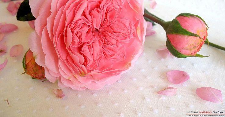 Английская роза своими руками - цветы из полимерной глины и мастер-класс. Фото №10