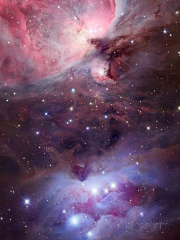 The Sword Region of the Constellation Orion, the Hunter Photographic Print by Robert Gendler at AllPosters.com – Astrid Bachmann