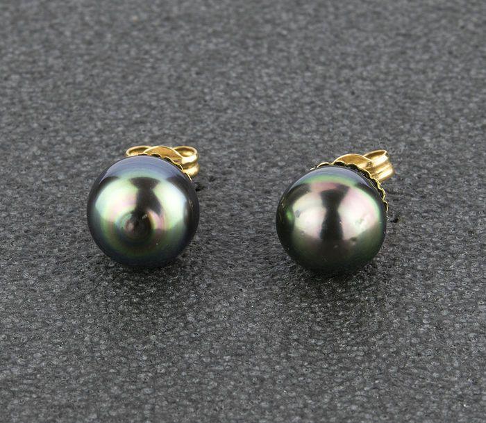 Goud (18 kt) - oorbellen - zout water gekweekte Tahitiaanse parels - Diameter: 10.50 mm (ca.)  EUR 1.00  Meer informatie