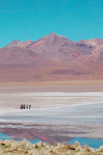 A group of Intrepid travellers explore the soft-hued vistas of #Bolivia. #LiveIntrepid