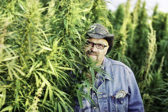 3 Small-Cap Marijuana Stocks to Get on Your Radar