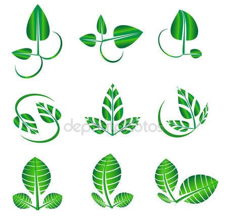 Vector editable abstract green shiny leaves icons, ecology, natural, organic, biology symbol logotype icons — Stock Vector © NiMaGraphics #147413117