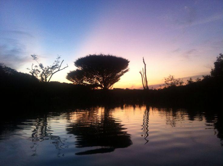 River Negro, Amazonia, dusk, Jan 2015