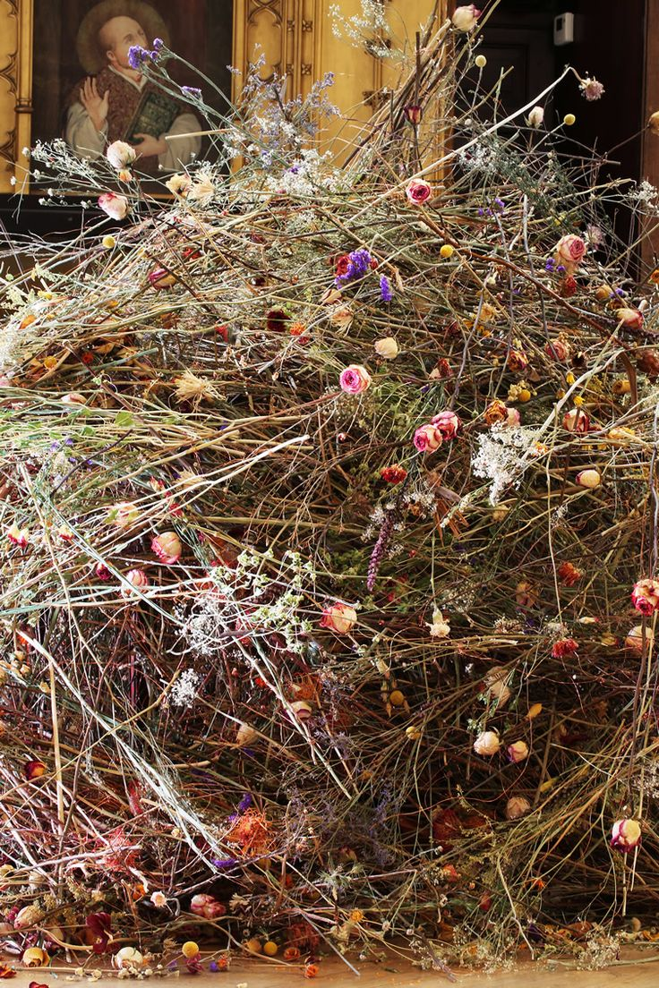 We chat to flower-artist Rebecca Louise Law, whose melancholic floral experiments have us astounded…