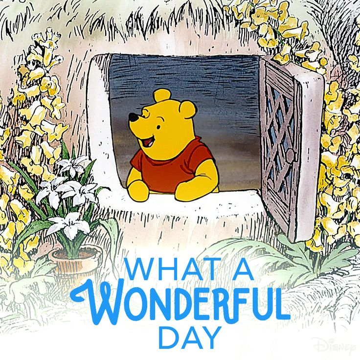 17 Best Images About Winnie The Pooh On Pinterest