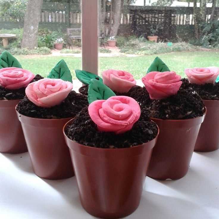 Pot plant cupcakes for Mother's Day