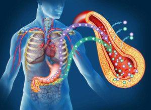 Путешествие в страну ожирения и метаболического синдрома начинается и заканчивается с гормоном инсулином. Инсулин трансформирует сахар в жир. Инсулин стимулирует увеличение содержимого жировых клеток. Чем больше инсулина, тем больше жира. Точка. Инсулиновая резистентность проявляется слабым уровнем энергии и перепадами настроения. Она ведет к гипертонии, сердечно-сосудистой патологии, раку, сахарному диабету, подагре, изжоге, старческому слабоумию и преждевременному […]