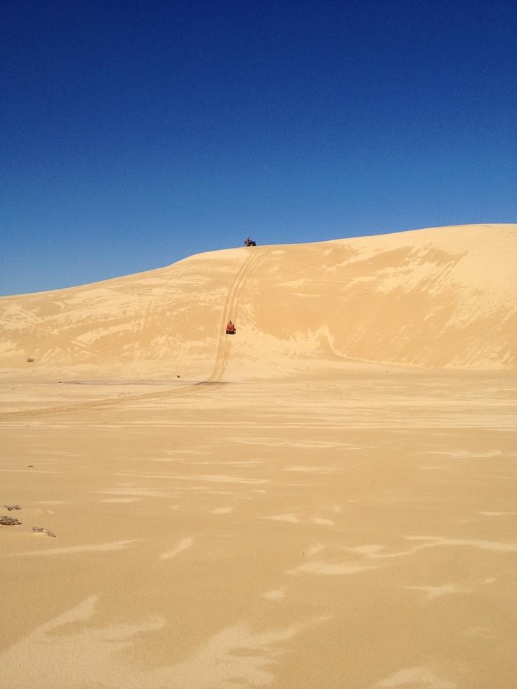Sand Dune Adventures, Port Stephens Australia