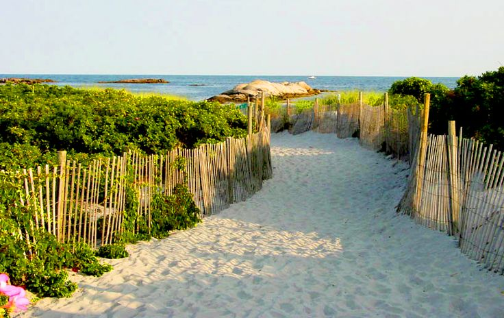 gooseberry beach, newport, rhode island! My very favourite beach in the whole world. i basically grew up on this beach