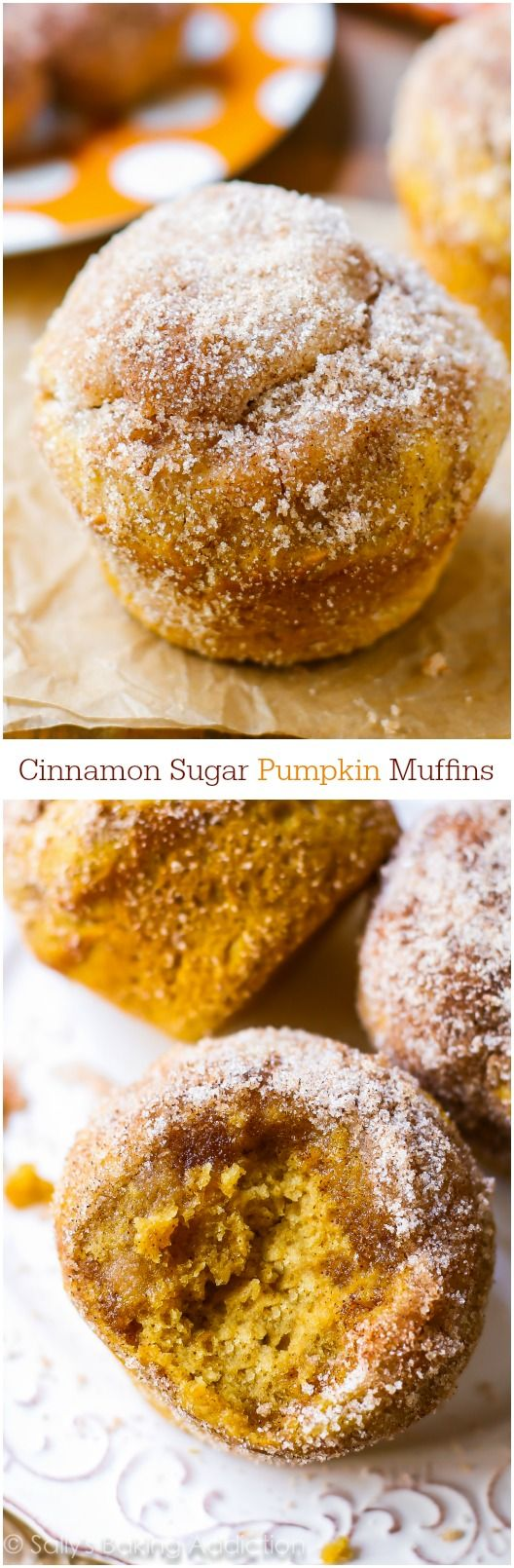 Love these bakery style Cinnamon-Sugar Pumpkin Muffins! I make this recipe year round.