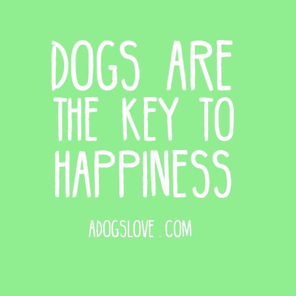 My dog makes me very happy!