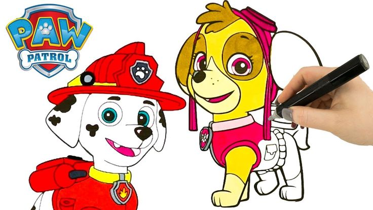 New Paw Patrol Coloring Book Videos For Kids with Sky Chase and Marshall Coloring Pages. If there are other Paw Patrol characters you would like to see us do Coloring Book Videos of let us know in the comments below!  More Coloring Book Videos For Kids  Paw Patrol Coloring Pages Marshall and Chase Coloring Book Videos For Kids - https://youtu.be/LqtwIERpw2U  Disney Cars 3 Coloring Pages Lightning McQueen Jackson Storm & More Coloring Book Videos For Kids - https://youtu.be/3pNfgof8yhA…