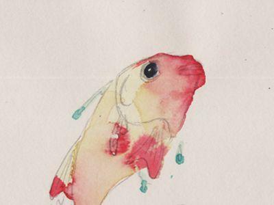 vatality, fish, popup