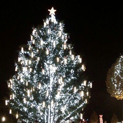 Christmas Market, Reims, 2014.