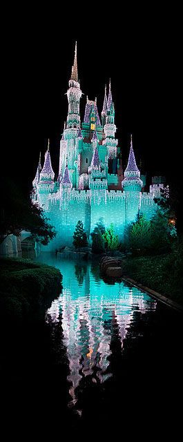 Disney Magical Castle in Disney World. Love the gorgeous lights on Cinderella's…
