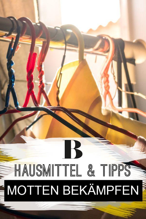 Motten Bekampfen Hausmittel Und Tipps Hausmittel Tipps Und Motten Im Kleiderschrank