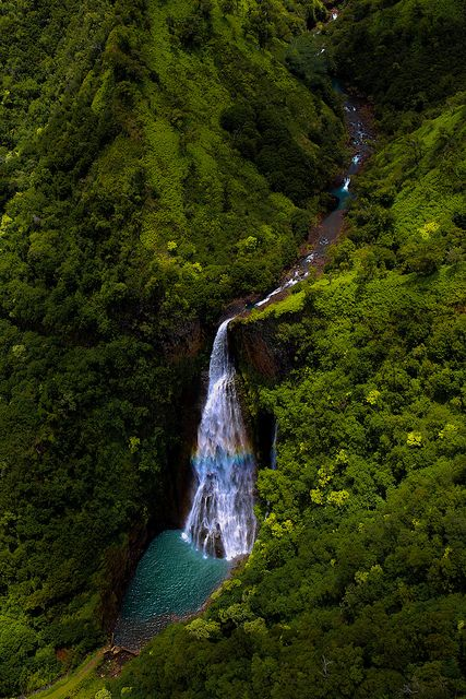 Kauai waterfall . . . a perfect example of how fast rain becomes waves. Keep it real by keeping it clean. Everything leads to the ocean #cmnty cmntyclothing.com