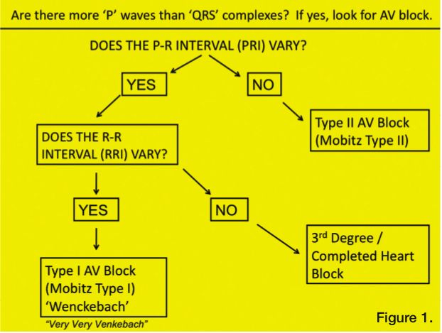 From: Ginapp T. Heart blocks: understanding which is which. Cath Lab Digest 2010;18(2):34.