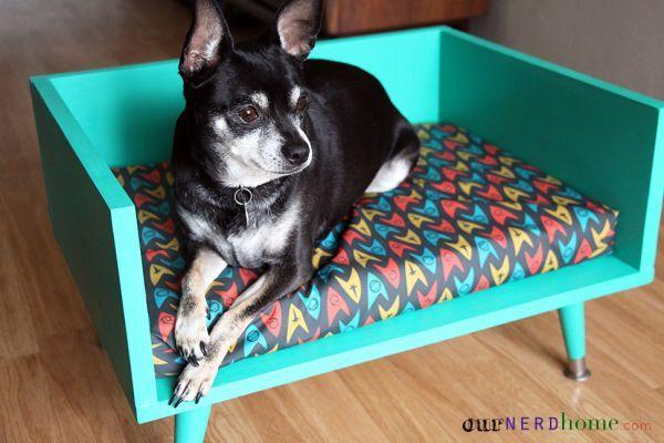 Sleek and Modern Dog Lounge