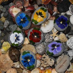 HAPPY ROCKS | Flickr - Photo Sharing! ... Pansies painted on rocks, how cheerful!