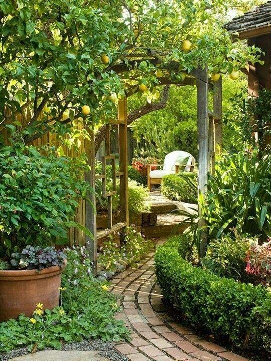 ik wil een tuin. Hier kun je even tot rust komen maar ook lekker buiten vergaderen. Ik denk dat dit wel positief werkt.