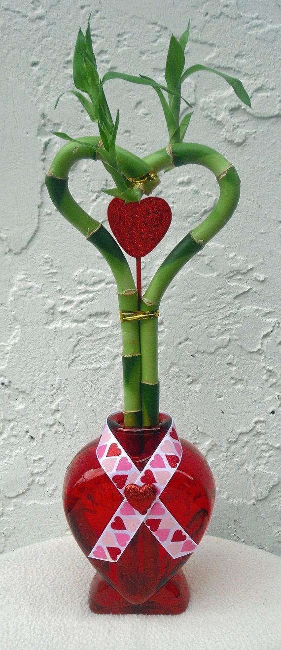 Valentines Day Lucky Bamboo Arrangement Red By