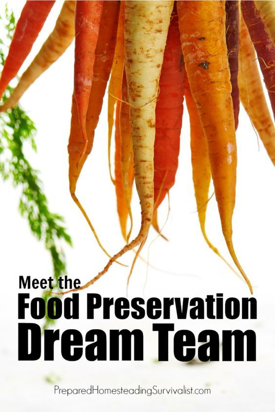 Meet the food preservation dream team. These three are all you need to get the job done | Prepared Homesteading Survivalist