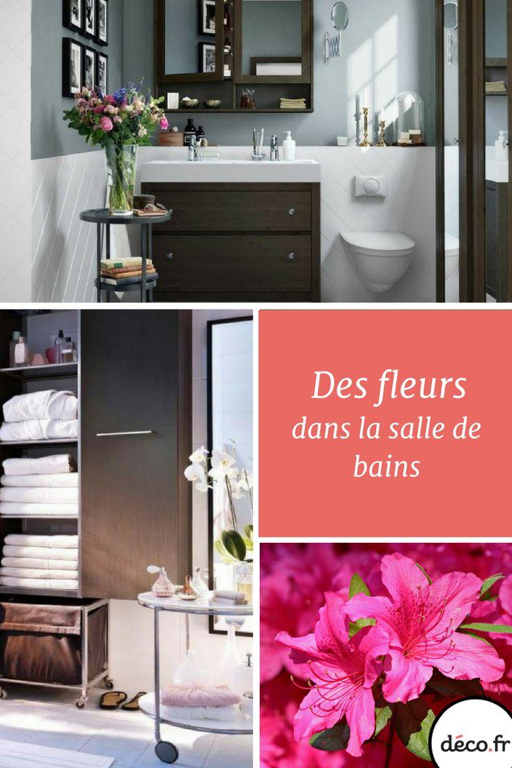 17 meilleures id es propos de plantes de salle de bains for Salle de bain humide