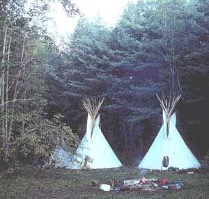 Nature Center Asheville Nc Summer Camp