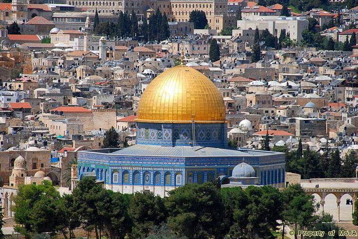 Palestine my homeland