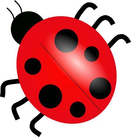 Free Ladybug Clipart 1
