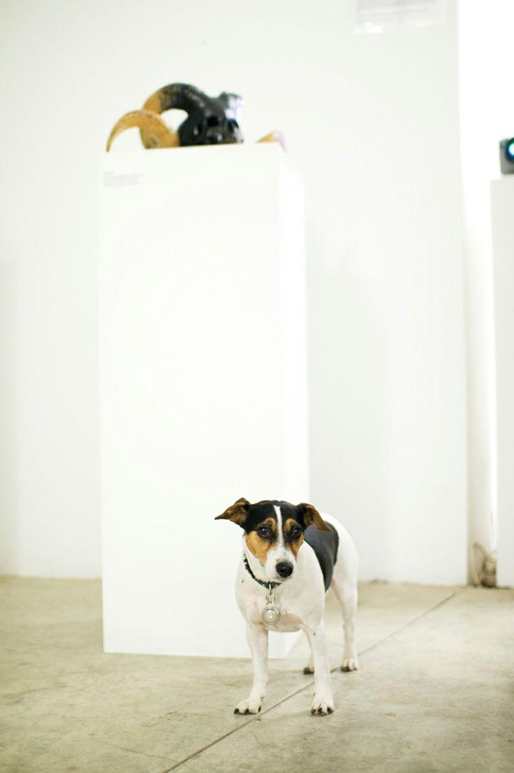 La Mort Exhibition at The Underdog Gallery http://www.underdogart.net