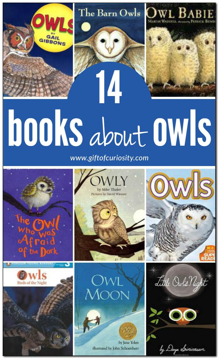 14 books about owls for kids with description and review. Includes both fiction and non-fiction children's books about owls. || Gift of Curiosity