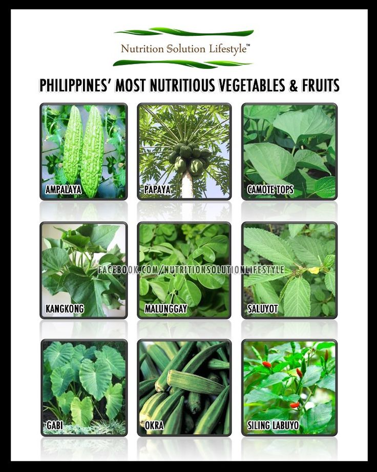 malunggay and spinach are kind of vegetables essay The term chili in most of the world refers exclusively to the smaller hot types malunggay and chilli as pesticide malunggay essays/malunggay-and-chilli.