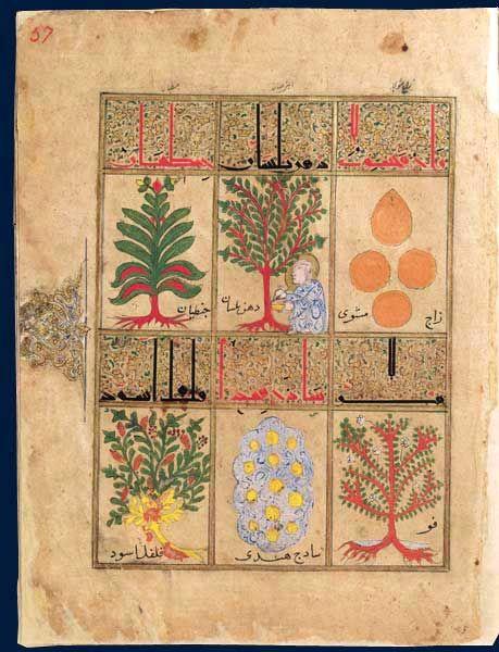 Kitâb al-Diryâq (Livre de la Thériaque), Pseudo-Galien,