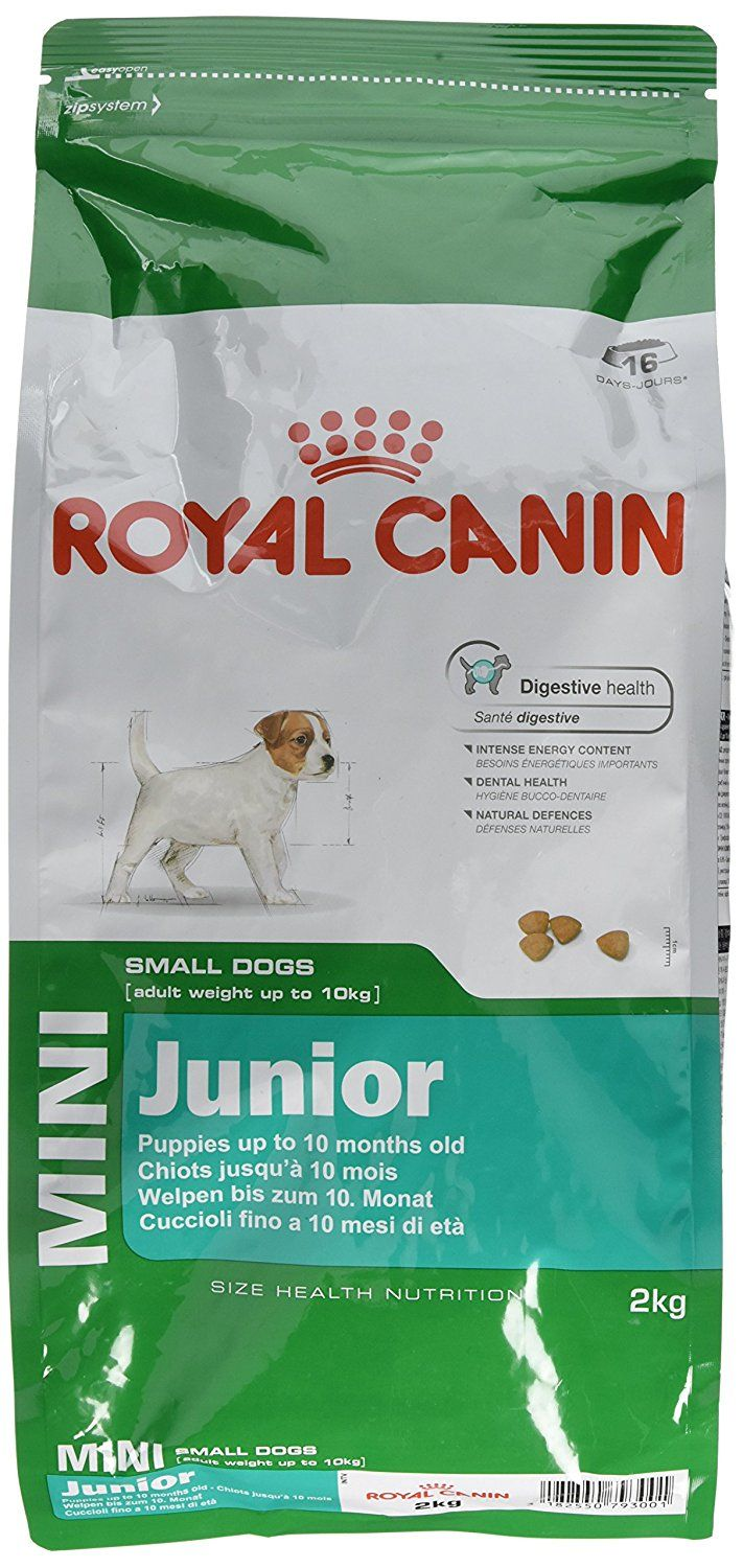 Royal Canin Mini Junior Dry Dog Food Want To Know More Click On The Image This Is An Affiliate Link And Dog Food Recipes Dry Dog Food Dog Food Allergies