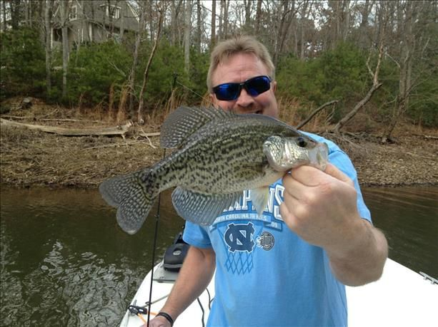 17 best images about fish pics on pinterest lakes blue for Badin lake fishing
