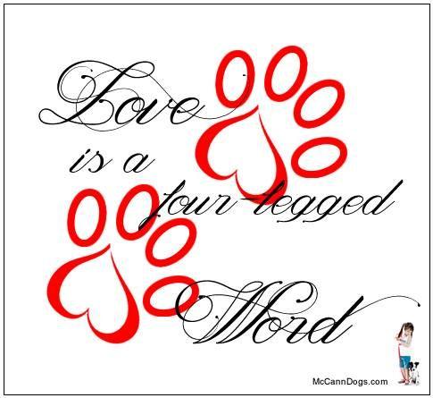 Love is a four-legged word - McCannDogs.com
