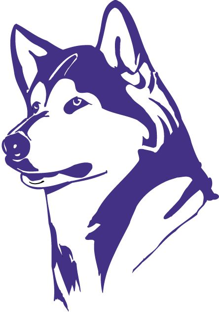 Purple Washington Huskies Logo