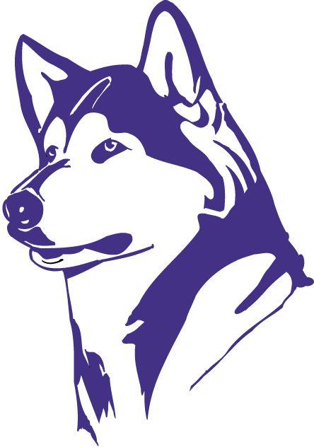 Purple Washington Huskies Logo